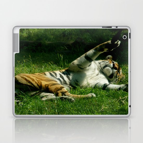 Resting Tiger Laptop & iPad Skin