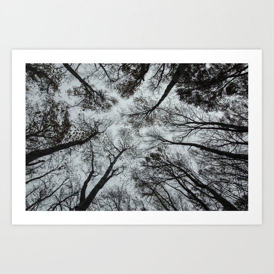 Forest dweller Art Print