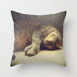 Catnapping Throw Pillow