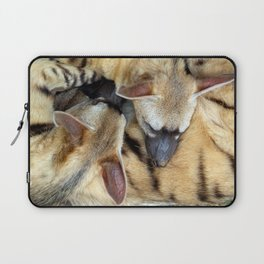 Three Sleeping Aardwolves Laptop Sleeve