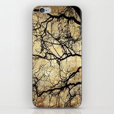 Branches Pattern and Texture iPhone & iPod Skin