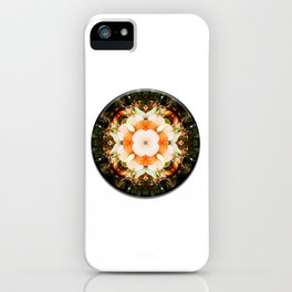4 Point Mandala - Pumpkins iPhone Case