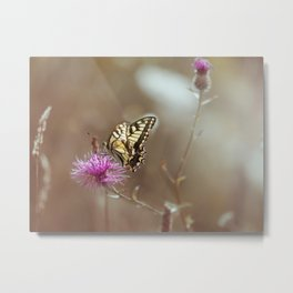Sweet caress Metal Print