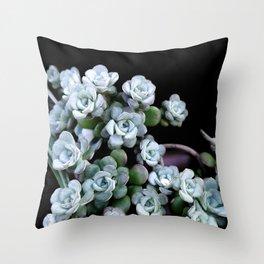Sedum Clavatum Throw Pillow