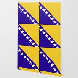 Bosnia and Herzegovina flag emblem Wallpaper