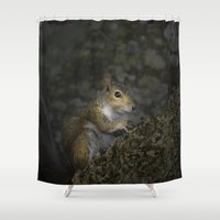 squirrel Shower Curtains featuring Squirrel by Judith Lee Folde Photography & Art