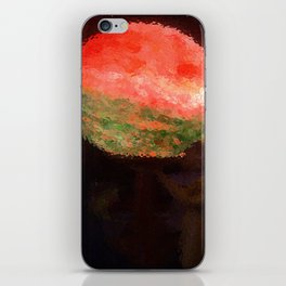 Summer Of Love: Deco iPhone Skin