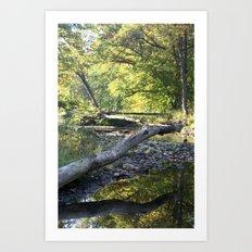 criss cross creek Art Print