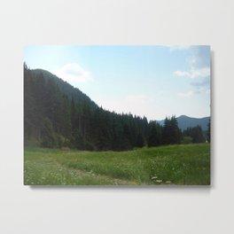 green beautiful nature Metal Print