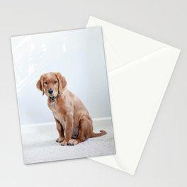 Dog by Maddy Baker Stationery Cards