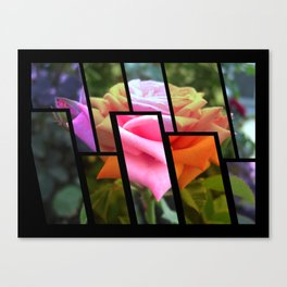 Pink Roses in Anzures 6 Tinted 1 Canvas Print