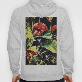 Apple Hoody