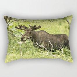 Bull Moose in Kincaid Park Rectangular Pillow