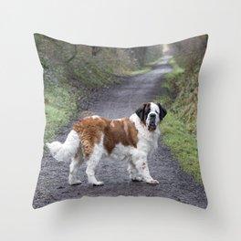 St Bernard dog in Autumn woodland walk Throw Pillow