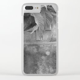 grave under leafs Clear iPhone Case
