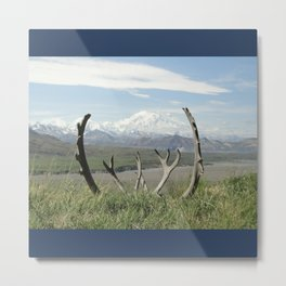 Mt. Denali Metal Print