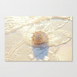 The Whelk I Canvas Print