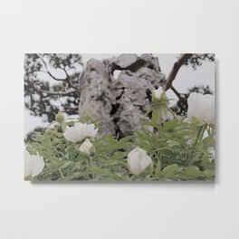 Chinese Heritage Garden Metal Print