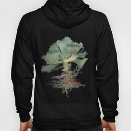 Cabbage Hoody