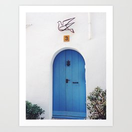 Dove door Art Print