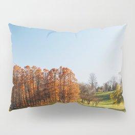 Autumn Trees Landscape, Bucharest Romania, Fall Season, Bucuresti Park, Forest Tree, Autumn Colors Pillow Sham
