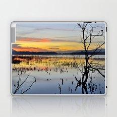 Lonely tree at the lake Laptop & iPad Skin