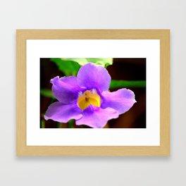 Random Flower Framed Art Print