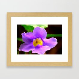 Random Flower Framed Art Print