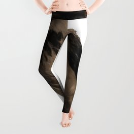 Hooded Crow Isolated Leggings