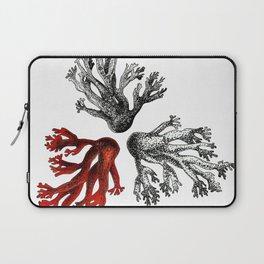 Coral 02 Laptop Sleeve