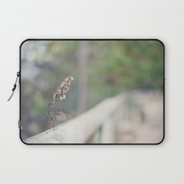 Coquette fence Laptop Sleeve