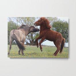 Wild Horses Metal Print