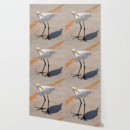 Egret Wallpaper
