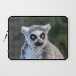Ring Tailed Lemur Laptop Sleeve