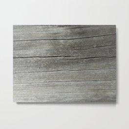 Ash Bark Metal Print