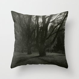 Old trees near Swans Lake, Seaside Park, Saint Petersburg Throw Pillow