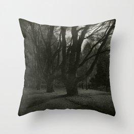 Old trees near Swans Lake, Seaside Park, Saint Petersburg Throw Pillow