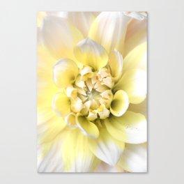 Dahlia in Bloom Canvas Print