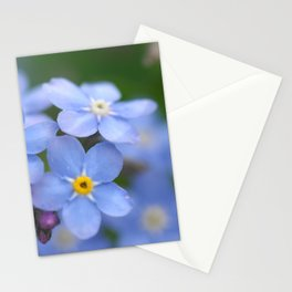 Flowers Izby Garden 4 Stationery Cards