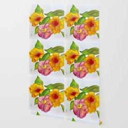 Hibiscus Flowers Wallpaper