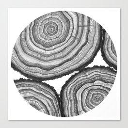 Tree Rings- Circle Canvas Print