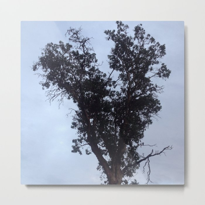 Silver sky heart tree Metal Print