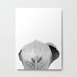 Elephant Back Photo | Black and White Metal Print