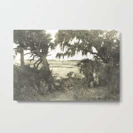 Wild Landscape Metal Print