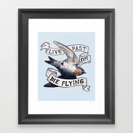 Bird no. 119: Speed Demon Framed Art Print