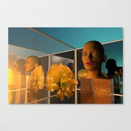 shopwindow dream Canvas Print