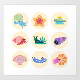 Hermit crab & starfish Art Print