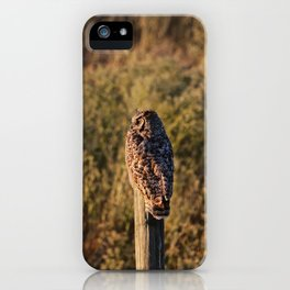 Greathorned soaking up some sun iPhone Case