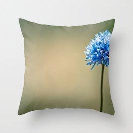 Blue Cotton Throw Pillow