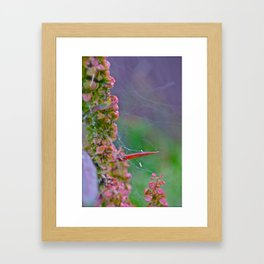 Pathways to a New World Framed Art Print